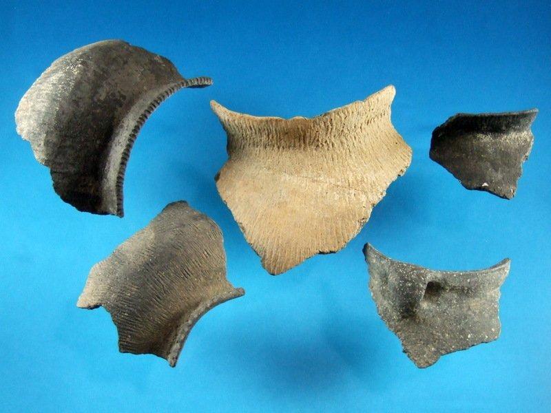 Group Of 5 Designed Pottery Necks