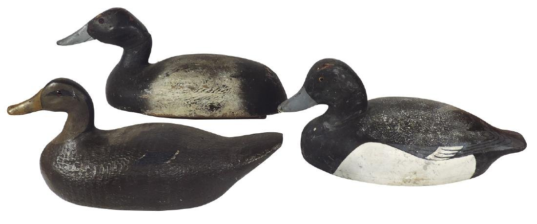 Duck decoys (3), early carved wood w/glass eyes, one