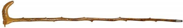 523: Cane w/celluloid alligator handle, Cyprus wood sha