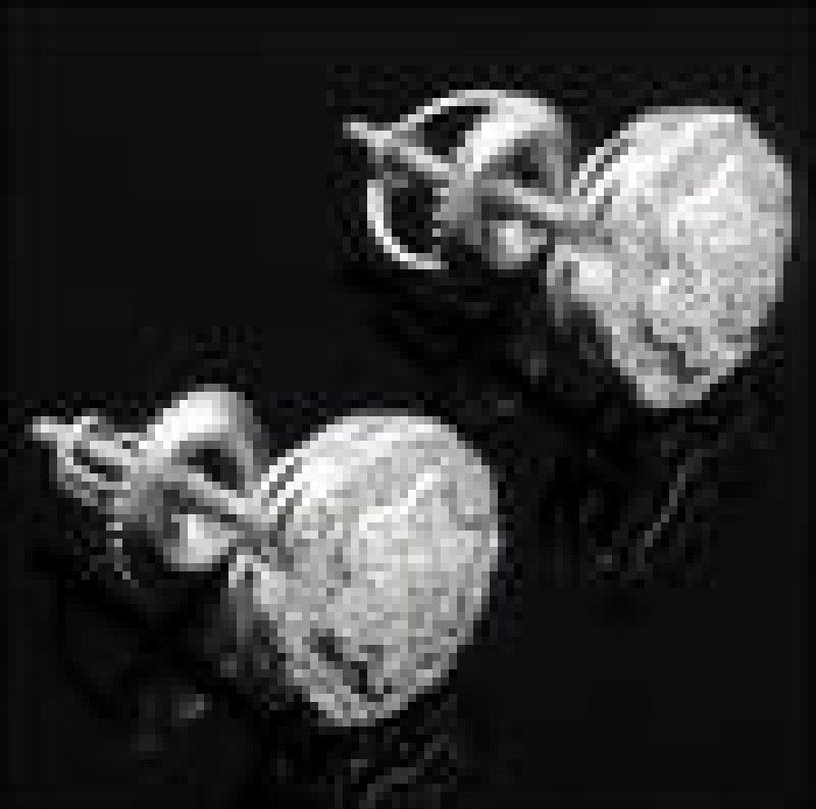 H-I, I1 and I2 0.30 CTW 60 Diamond Designer Earrings