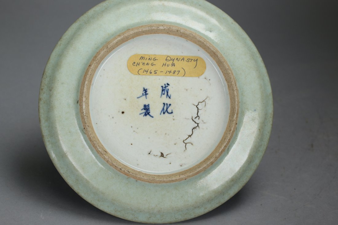 Ming Dynasty Cheng-Hua Blue and White Plate - 6