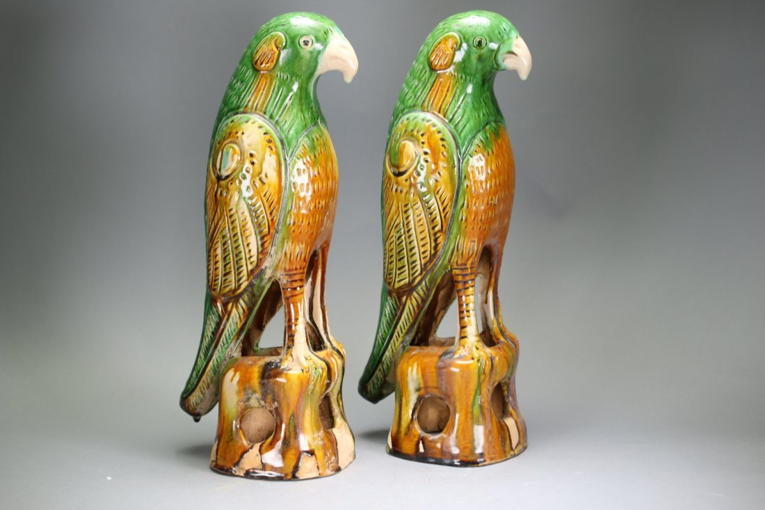 Pair Chinese sancai parrots,18th century - 4