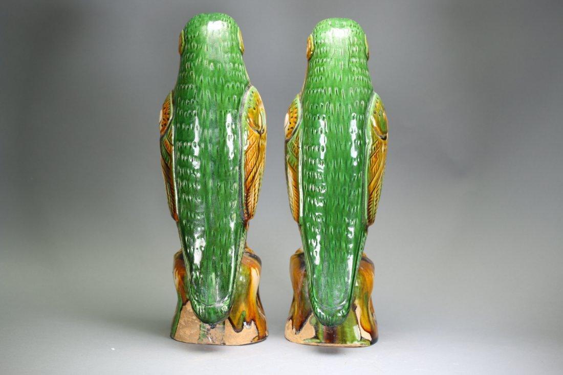 Pair Chinese sancai parrots,18th century - 7