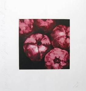 Donald Sultan, Pomegranates (from The Fruits And