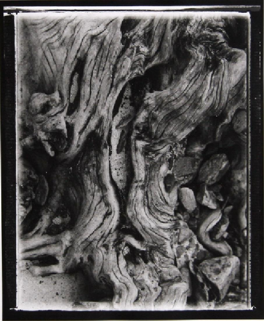 Brad Starks, Forms 6, Photograph