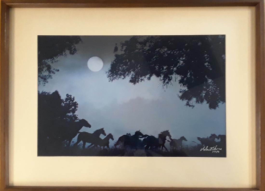 Robert Vavra, Thunder by Moonlight, Dye-Transfer