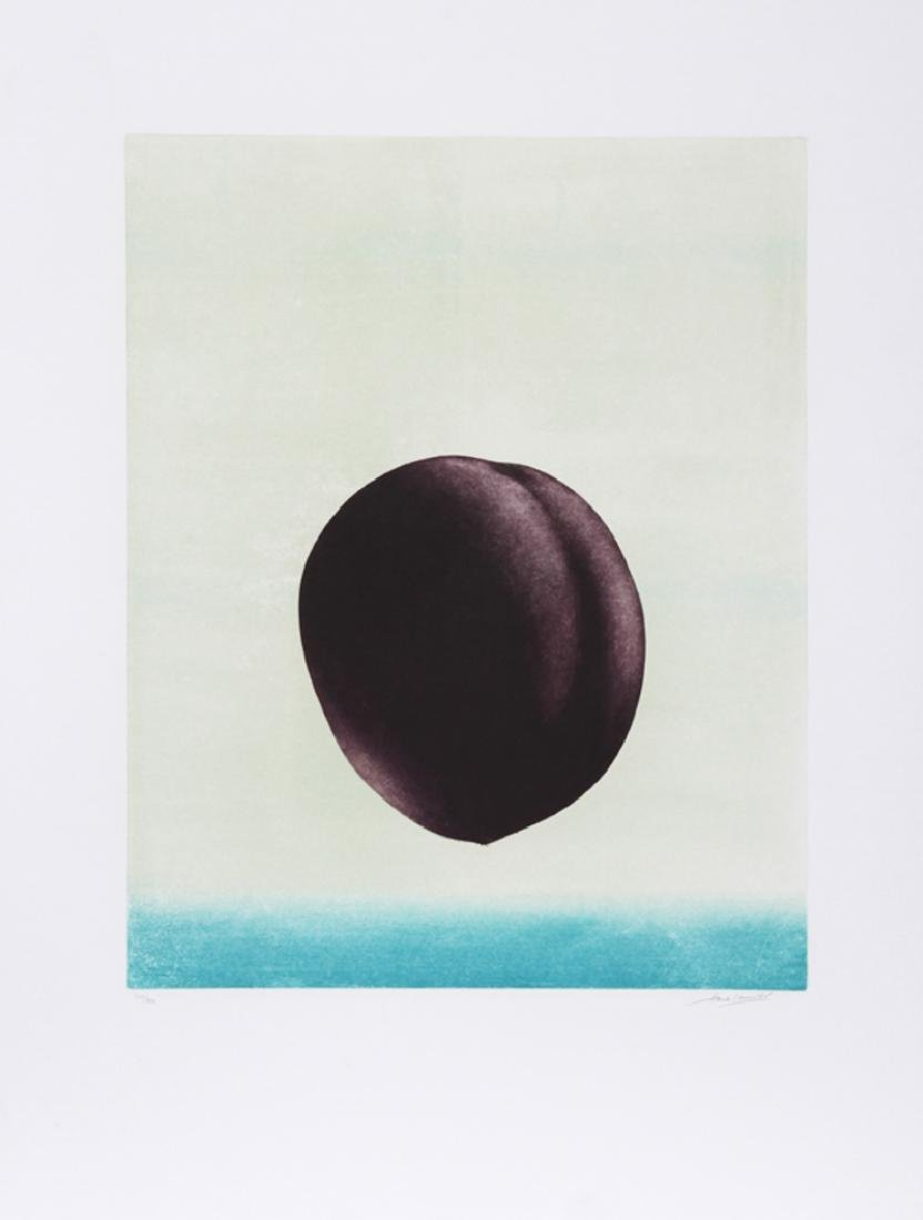 Hank Laventhol, Plum, Aquatint Etching