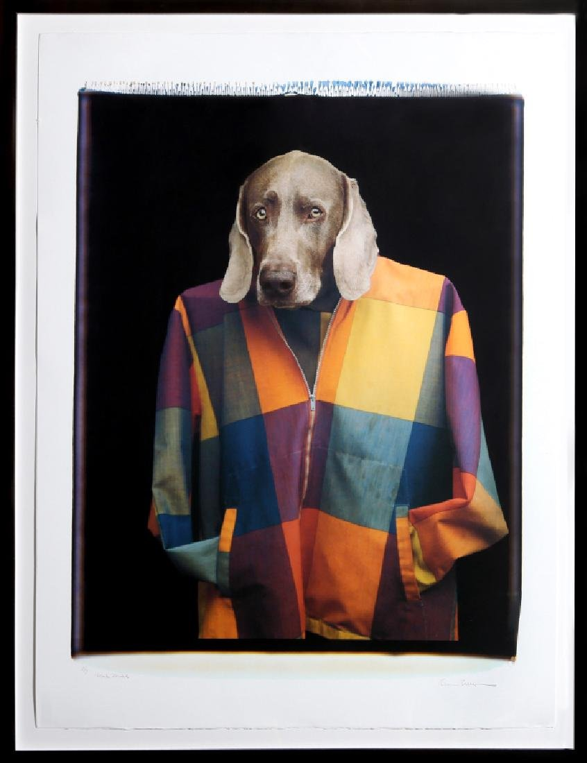 William Wegman, Male Model, Photograph