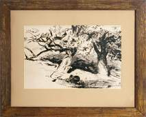 Walter Shirlaw, Two Trees, Ink Drawing