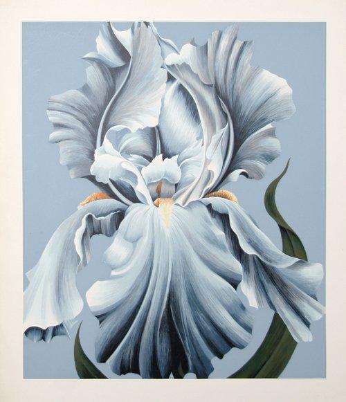 298: John Zak, White Iris, Lithograph