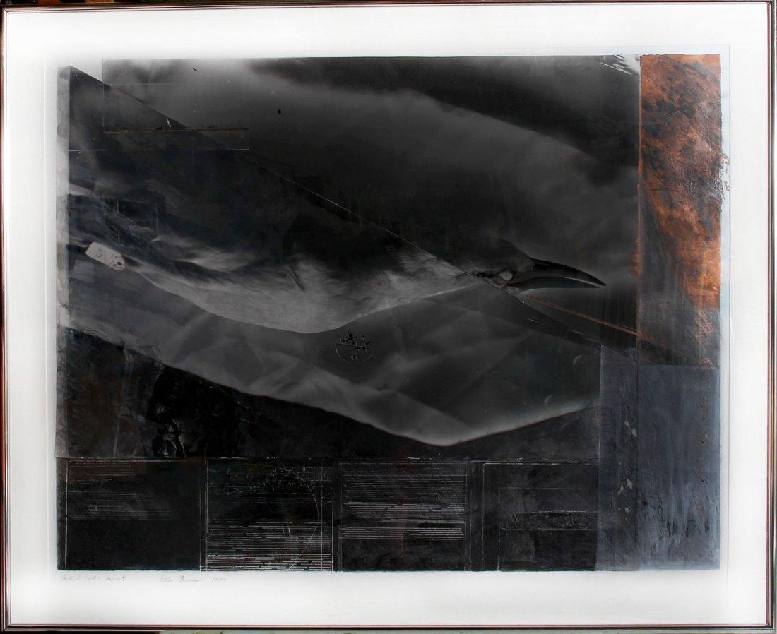 Ellen Garvens, Folded Bird Gannet, Acrylic, Graphite an