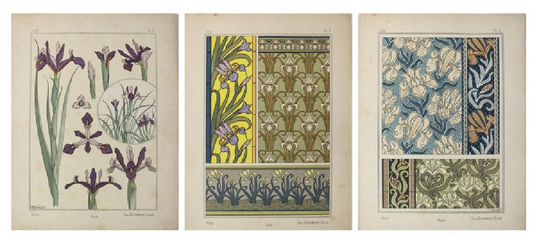 Botanical Print Portfolio by Maurice Verneuil curated