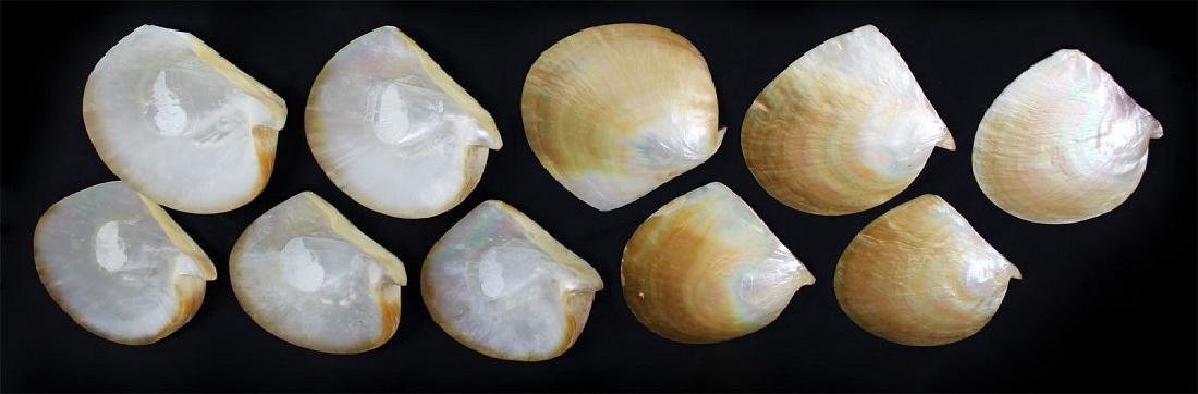 Decorative Arts: Mother of Pearl plates (ten)