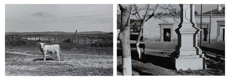 Ira Nowinski (b. 1942) New York (ten) - 10