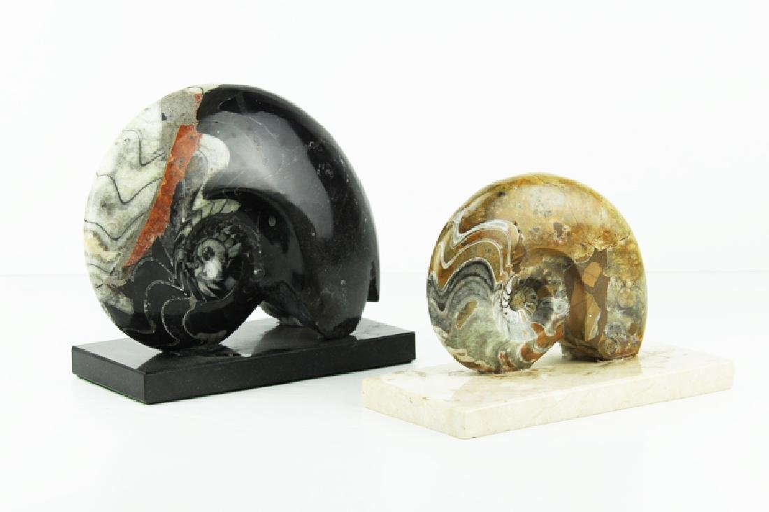 Fossils (two)