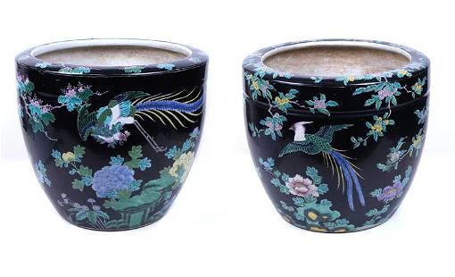 Chinese Famille Noir Porcelain Planters Vases 19th