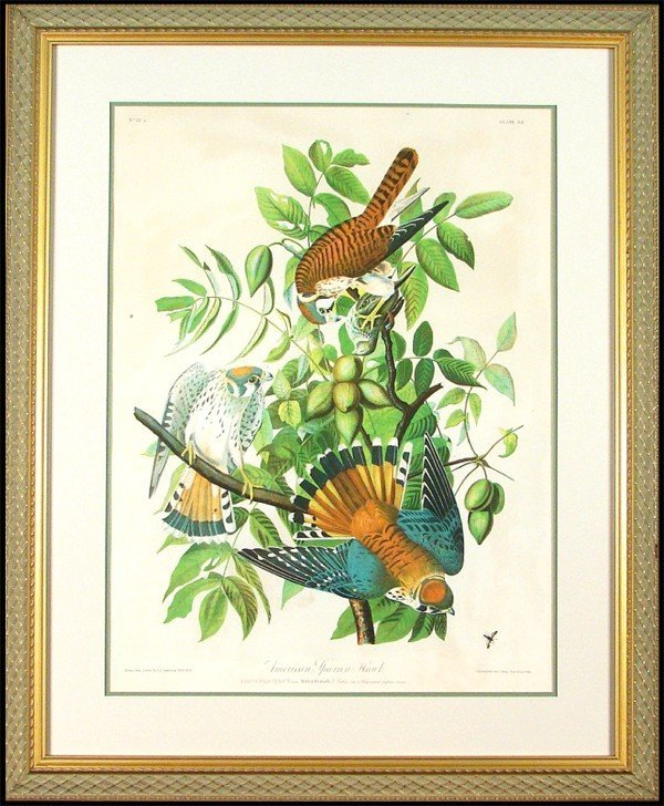 20: John James Audubon (1785-1871) American