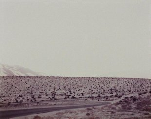 Richard Misrach Prices - 57 Auction Price Results