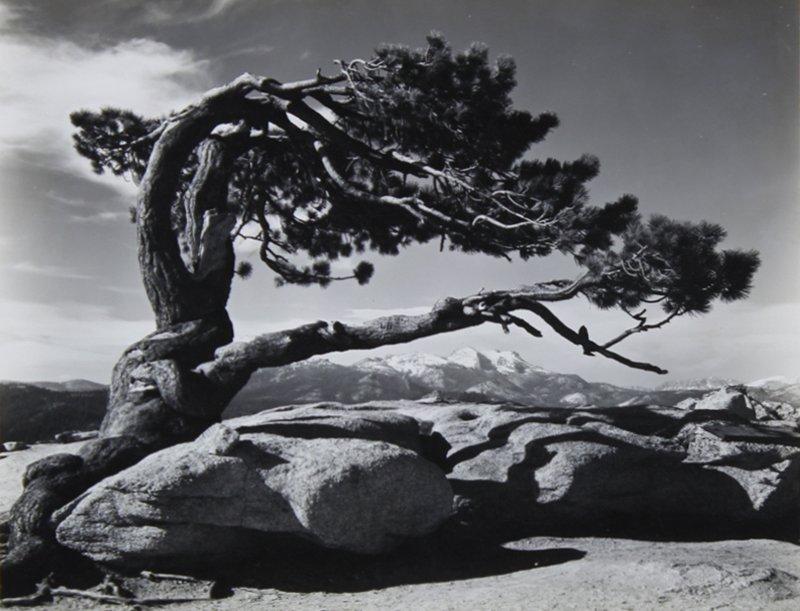 Ansel Adams (1902-1984) California
