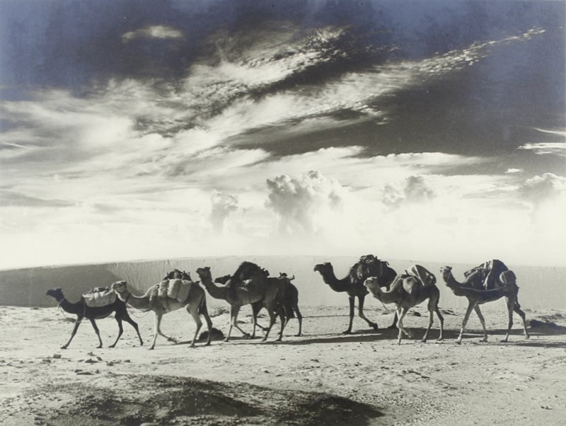 Unidentified Middle Eastern Photographer (mid-Century) - 4