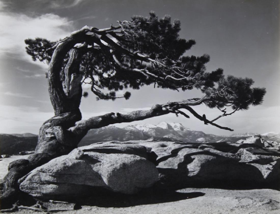 Ansel Adams (1902-1984) California