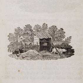 Bewick (Thomas) - History of British Birds [-