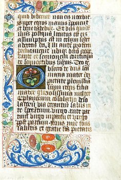 11D: Book Of Hours, a bifolium and a single f.