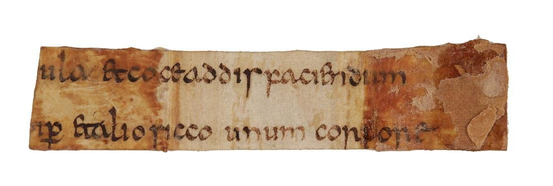 Cutting from an otherwise lost medical text , in early