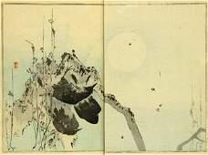 117A Seitei Watanabe Seitei Kacho Gafu