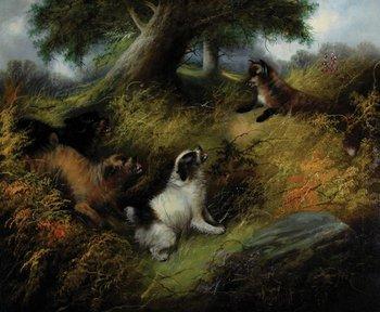 1B: Armfield (Edward) Three-to-one on the Fox