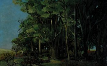 7B: Deman (Albert, b.1927) A Forest Setting