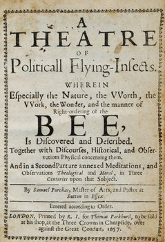 6C: Purchas Theatre politicall flying-insects.bee