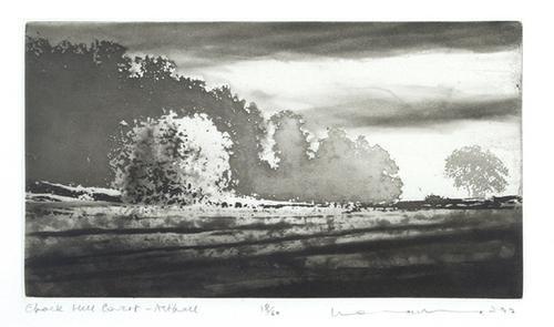 8B: Norman Ackroyd (b.1938) chalk hill covert, asthall