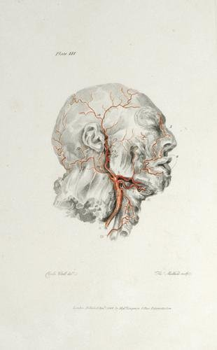 3B: Bell.Engravings of the Arteries,1801