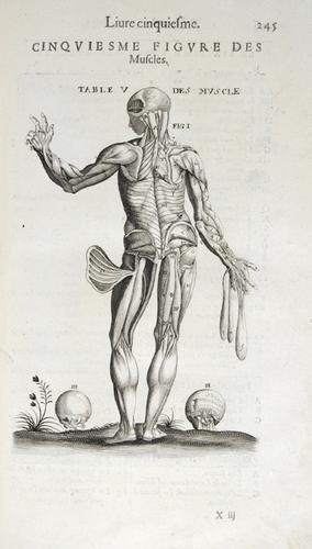 14B: Du Laurens (André) Les Oeuvres,1646