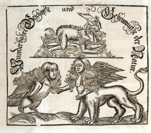 17B: Falloppio.Geheimnisse der Natur,1715