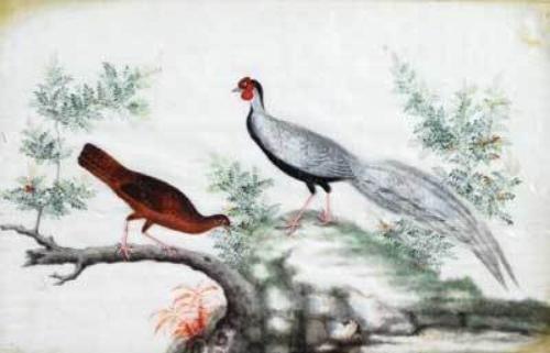 19D: Chinese School.- a set 4 ricepaper paintings of bi