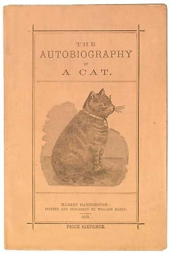 1339: Autobiography of a Cat (The),