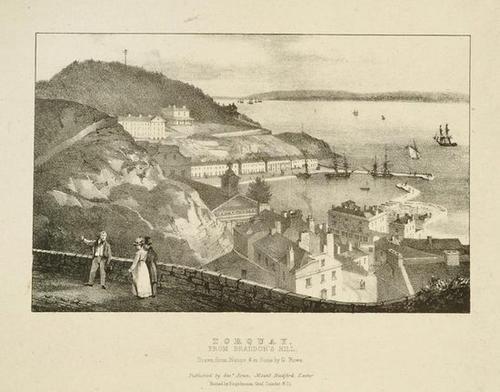 429: Rowe (George) Views of Torquay