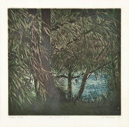 19: Don Bessant (1941-1993), By Jones�s Pond, etchin