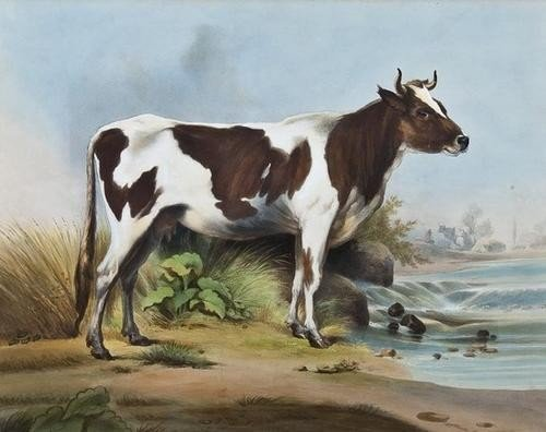 4: [Goupil & Cie.] A pair of cattle studies