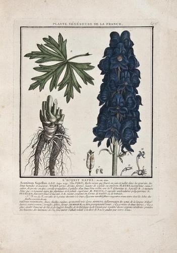 23: Bulliard (Pierre) Histoire des Plantes Vénéneuses