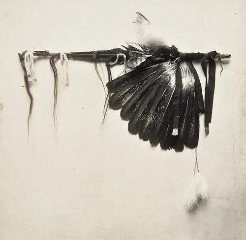 4: De Lancey W. Gill (1859-1940) Indian Feathers, ca.
