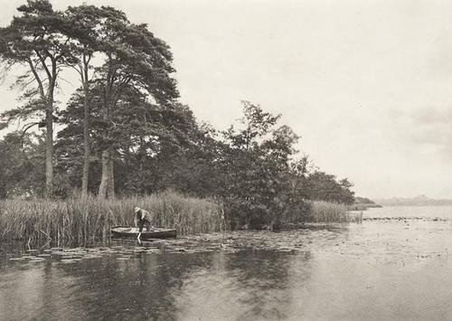 9: Peter Henry Emerson (1856-1936) The Haunt of the P