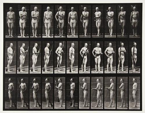 22: Eadweard Muybridge (1830-1904) Animal Locomotion,