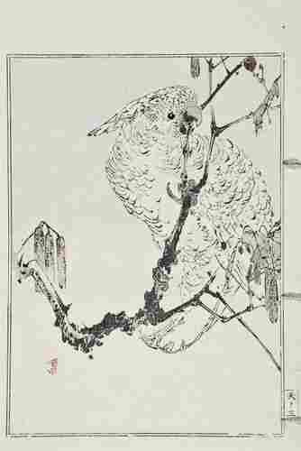 133: Watanabe (Seitei) Seitei Kacho Gafu [A Book of Dra