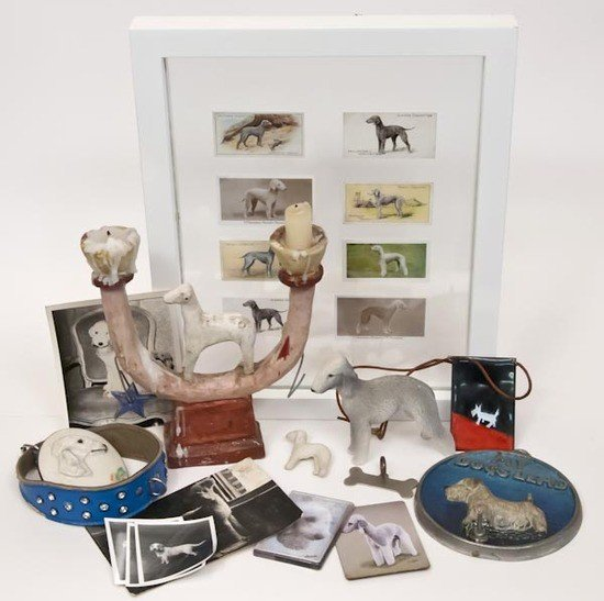 20: A selection of Bedlington Terrier objects and pho
