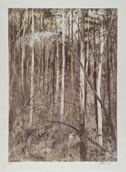 5: Arthur Boyd (1920-1999) Suffolk Woods