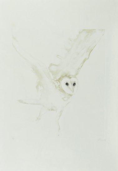 11: Elisabeth Frink (1930-1993) Young Barn Owl (W.120)