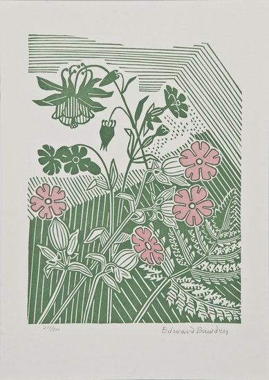 7: Edward Bawden (1903-1989) Campions and Columbine